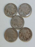 1918 P BUFFALO NICKEL CIRCULATED WITH READABLE DATES PLUS SHIPS FREE