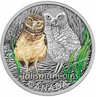 CANADA 2015 BABY ANIMALS 3 BURROWING OWL CHICK $20 PURE SILVER PRF IN FULL OGP