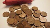 1957 D 50 COIN SOLID DATE ROLL   CIRCULATED WHEAT PENNIES   NICE  AVG CIRC TO AU