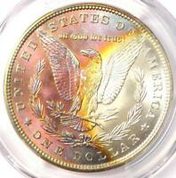 1884 TONED MORGAN SILVER DOLLAR $1 - CERTIFIED PCGS MINT STATE 63 -  RAINBOW TONING