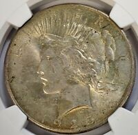 1925 SILVER PEACE DOLLAR NGC MINT STATE 63 BU UNC WITH GREAT DETAIL LIGHTLY TONED 27FS