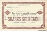 NEW RIVER INVESTMENT COMPANY.1800'S UNISSUED STOCK CERTIFICATE