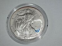 2007 W AMERICAN SILVER EAGLE DOLLAR   BURNISHED  FLAWLESS BEAUTY OFFER