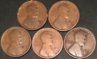 1913-D 5 COIN LOT LINCOLN CENTS// AVERAGE CIRCULATED// FAST SHIPPING