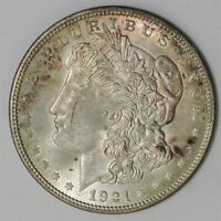 1921  MORGAN DOLLAR $  UNCIRCULATED VAM-1A, PITTED REVERSE, TOP 100