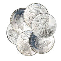 1987-1993 $1 AMERICAN SILVER EAGLE IMPERFECT TONED SPOTS ETC ONE COIN RANDOM