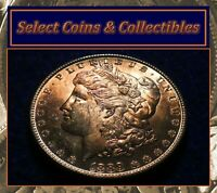 1889 BU MORGAN SILVER DOLLAR BEAUTIFUL AMBER TO RUSSET TONER VAM-63 586