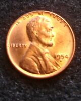 CIRCULATED RED 1954-D DENVER MINT COPPER LINCOLN WHEAT CENT