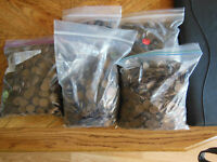 LINCOLN WHEAT CENTS 5 PARTIAL BAGS OF LINCOLN CENTS 1920'S AND 1930'S