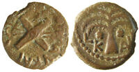 CLAUDIUS A. FELIX PALM TREE BPIT CROSSED SHIELDS AND SPEARS