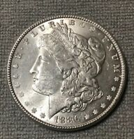 CHOICE BU 1886 P MORGAN SILVER DOLLAR  ESTATE SALE  NO RESERVE $1  UNC