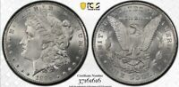 1884 CC MORGAN SILVER DOLLAR PCGS MINT STATE 63 WITH GOLD SHIELD  TRUVIEW IMAGES