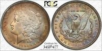 1893 S MORGAN SILVER DOLLAR  KEY DATE COIN PCGS EXTRA FINE  DETAILS
