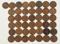 WHEAT CENTS 1930S THIRTIES LOT 43 COINS