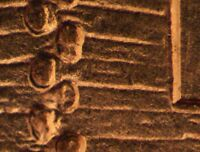 2009 P EC WDDR 066 LINCOLN CENT DOUBLED DIE