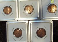 5 LINCOLN CENT PENNY LOT 1912 1914 1916 D 1916D 1917 D 1917D 1918 D 1918D