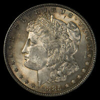 1885 $1 MORGAN SILVER DOLLAR, ORIGINAL TONING UNC LOTW533