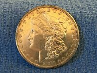 1884 S MORGAN SILVER DOLLAR KEY DATE FULL BREAST FEATHERS
