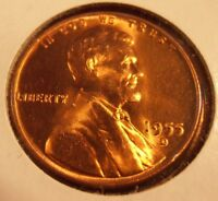1955 D LINCOLN CENT BRIGHT BEAUTIFUL COIN FROM BANK ROLL