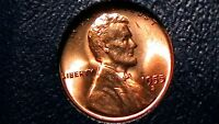 1955-S BRILLIANT UNCIRCULATED LINCOLN CENT  RED BEAUTY  898RL