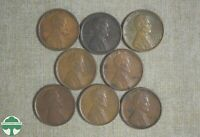 LOT OF 8   1909 VDB LINCOLN WHEAT CENTS   NICE GRADES