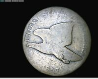 1857 FLYING EAGLE SMAL CENT PENNY 1713