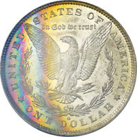 1881-O MORGAN DOLLAR PCGS MINT STATE 63 RAINBOW TONED GOLD SHIELD PL REVERSE