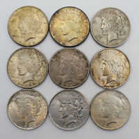 LOT OF 9 PEACE SILVER DOLLAR COINS A15