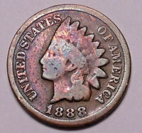1882 P Indian Head Cent Penny  SDS  **FREE SHIPPING**