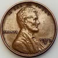1929 D LINCOLN CENT ADD THIS COIN TO YOUR COLLECTION