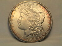 1882-S  MORGAN SILVER DOLLAR EDGE TONING AND LUSTROUS