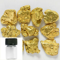10 PIECES ALASKA NATURAL GOLD NUGGETS WITH BOTTLE - SHIPS FREE 372E