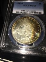 1880 S MORGAN DOLLAR   MS 66 PCGS RAINBOW TONING