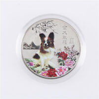 2018 YEAR OF THE DOG COMMEMORATIVE COLLECTION COIN CRAFT KEEPSAKE GIFT SLIVERCEV