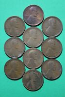 LOT OF 10 1909 P PLAIN LINCOLN WHEAT CENTS EXACT COINS FLAT RATE SHIPPING OCE438