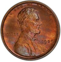 1909 VDB RB PCGS PURPLE TIGER STRIPED LINCOLN WHEAT CENT  GORGEOUS TONED COIN