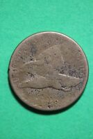 1858 FLYING EAGLE SMALL CENT EXACT COIN PICTURED FLAT RATE SHIPPING OCE153