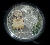 BABY BURROWING OWL   2015 $20 PURE SILVER COIN & STAMP SET