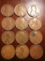 LOT OF 12 1927-D LINCOLN WHEAT CENT