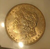 1882 MORGAN SILVER DOLLAR  UNC, GOLD TONED OBVERSE, PCI SLABBED 3632