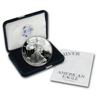 1999 US PROOF AMERICAN SILVER EAGLE  GOVERNMENT PACKAGE OGP PERFECT