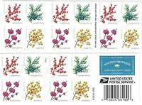 WINTER BERRIES BOOKLET OF 20 U.S. POSTAGE FOREVER STAMPS NEW