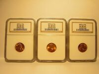 LOT OF 3 THREE 1953 D 1C LINCOLN WHEAT CENTS NGC MINT STATE 66RD