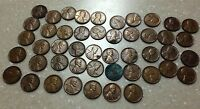 47 INDIVIDUAL - 1954 LINCOLN WHEAT PENNIES