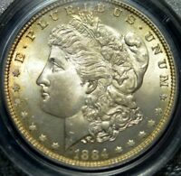 1884 MORGAN DOLLAR  PCGS MINT STATE 66 CAC GOLDEN TONING