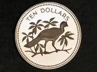 BELIZE 1975 $10 GREAT CURASSOW CHOICE PROOF   MTG 8794