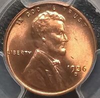 1936-D LINCOLN CENT  PCGS MINT STATE 66RD   SHIPS FREE