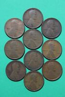 LOT OF 10 1909 P PLAIN LINCOLN WHEAT CENTS EXACT COINS FLAT RATE SHIPPING OCE430