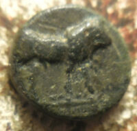 10 MM 0.89 GRAMS ANCIENT BRONZE: PERHAPS A BULL RIGHT AND ALTAR OR TEMPLE?