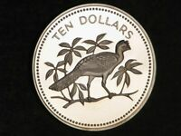 BELIZE 1976 $10 GREAT CURASSOW SILVER CHOICE PROOF   MTG 589